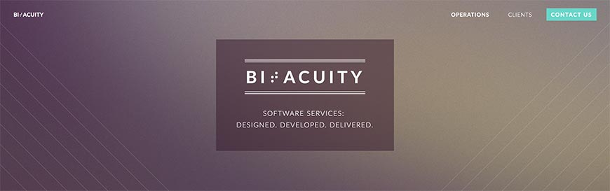 bitacuity website crawler
